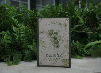 Review sách Hoa Hồng Sa Mạc
